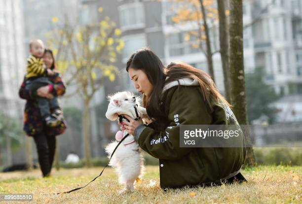 Yu Linghan plays with her dog Xiao Qi at a park on December 23 2017 in Chengdu Sichuan Province of China 20yearold Chinese girl Yu Linghan together...