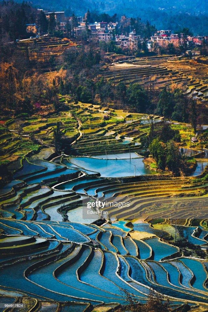 Yuanyang rijst terras veld tijdens de middag van de verticale weergave van de top hoek met dorp als achtergrond : Stockfoto