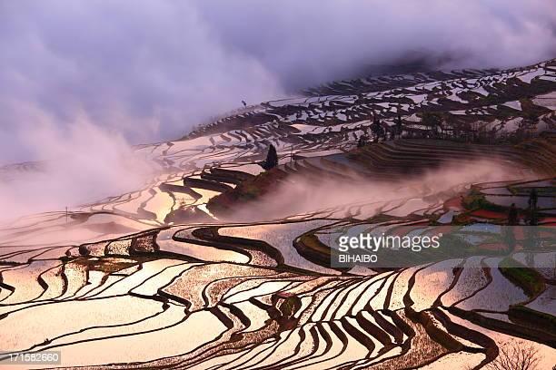 yuanyang terrassenfeldern in yunnan, china - yuanyang stock-fotos und bilder