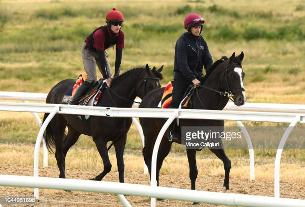 Yucatan and Cliffs Moher gallop during a trackwork session at Werribee Racecourse on October 3 2018 in Melbourne Australia