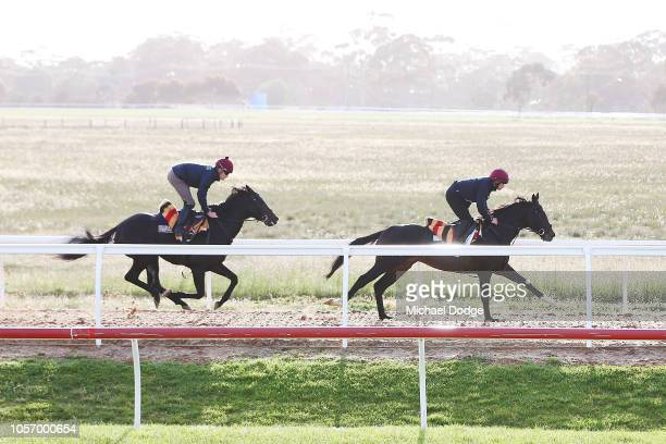 Yucatan gallops ahead of Cliffs Of Moher during a Werribee trackwork session at Werribee Racecourse on November 4 2018 in Melbourne Australia