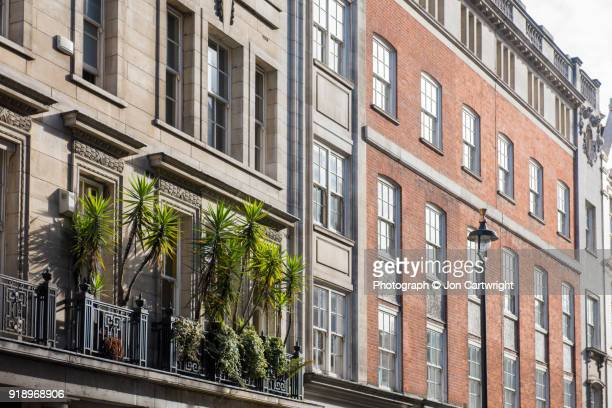 Yucca trees on a balcony on a London street