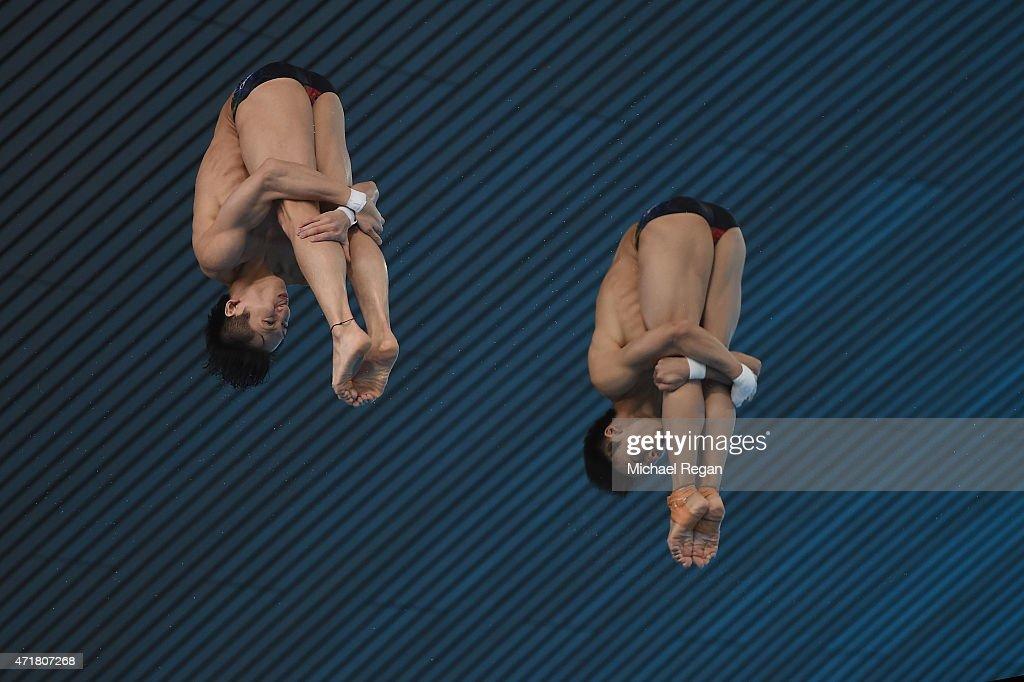 FINA/NVC Diving World Series