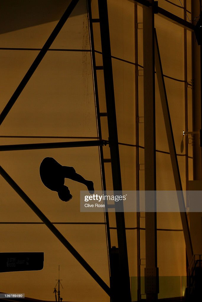 18th FINA Visa Diving World Cup - LOCOG Test Event for London 2012: Day Six