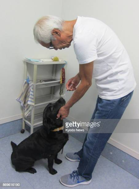 Yuji Sato chief of dog training center St Sugar Japan tries to teach his dog to recognize the odor of cancerous cells in Tateyama Chiba Prefecture on...