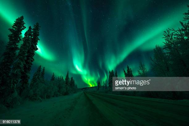 yukon - aurora borealis stock pictures, royalty-free photos & images