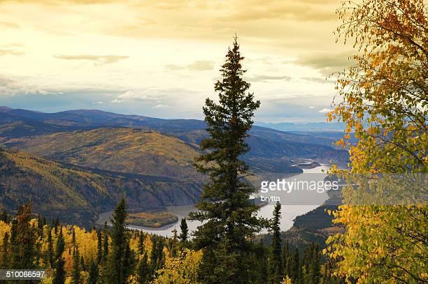 Río yukón: desde la medianoche Dome Lookout, Dawson ciudad, Yukon, Canadá.