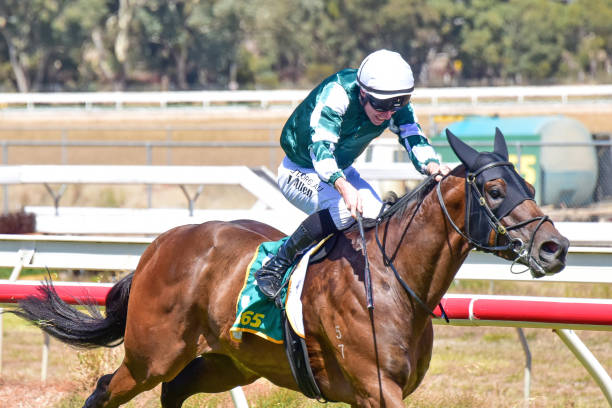 AUS: Stawell races