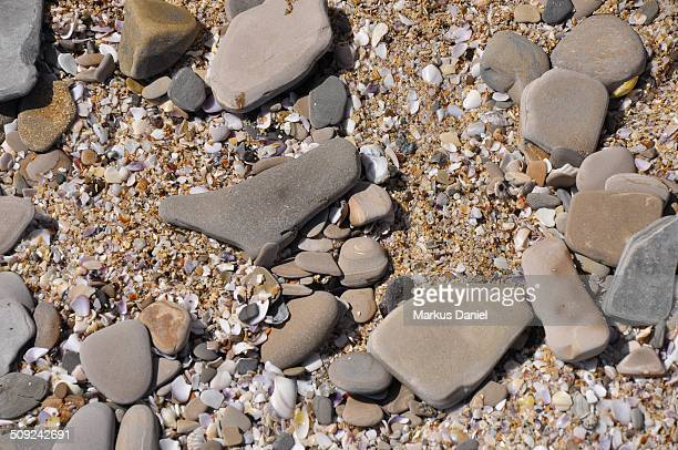 "yumaque beach shells and stones in paracas desert - ""markus daniel"" stock pictures, royalty-free photos & images"