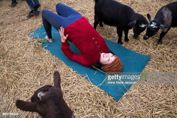 YuMee Chung showcases Bridge Pose with some friendly goats as the 95th Royal Agricultural Winter Fair trots into Toronto
