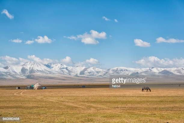 yurt and horse at lake song kol - kyrgyzstan stock pictures, royalty-free photos & images