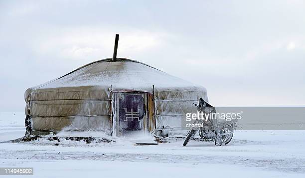 yurt in snow at khustain nuruu in mongolia - independent mongolia stock pictures, royalty-free photos & images