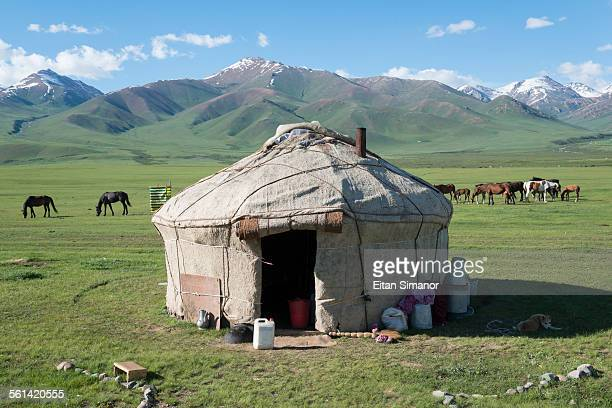 yurt in suusamyr basin. kyrgyzstan. - kyrgyzstan stock pictures, royalty-free photos & images