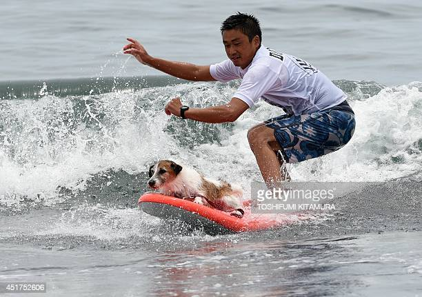 Yutaka Oshima and his dog Jack ride on a wave during the animal surfing portion of the Mabo Royal Kj Cup surfing contest at Tsujido beach in Fujisawa...