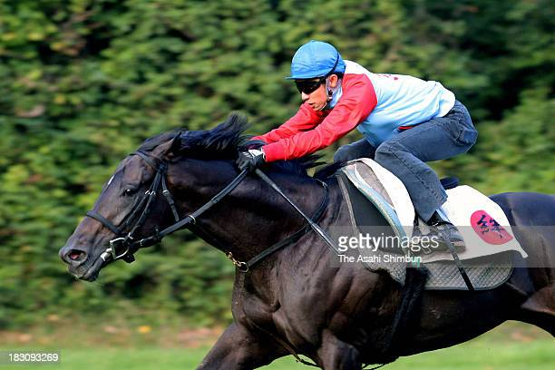 Yutaka Take riding Kizuna in the training at Chantilly racecourse on October 2 2013 in Chantilly France