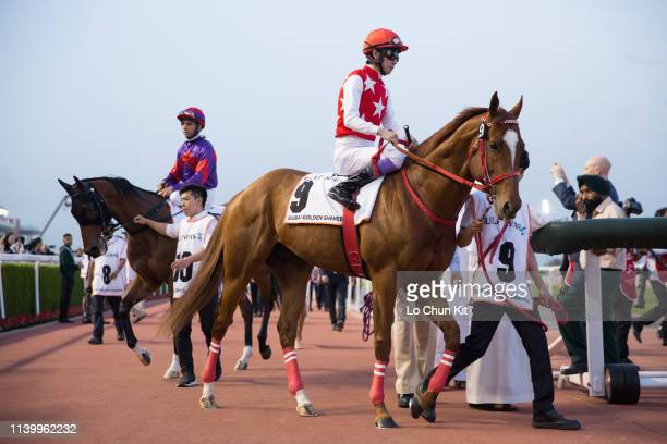 Yutaka Take riding Matera Sky during the Dubai Golden Shaheen during in Dubai World Cup Day at Meydan Racecourse on March 30, 2019 in Dubai, United...