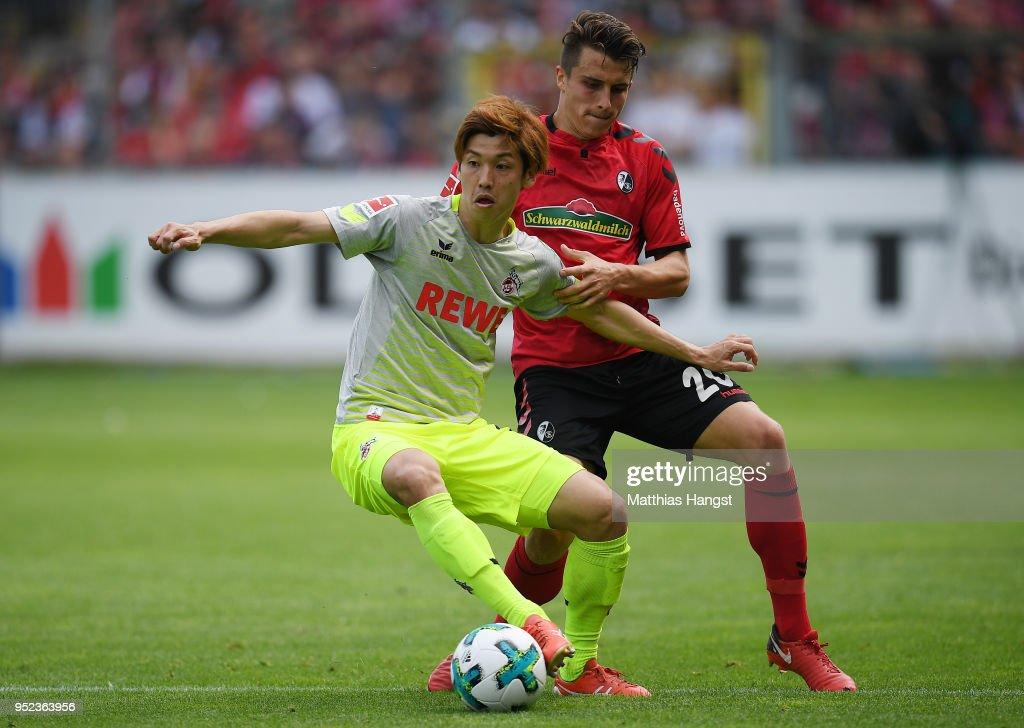 Sport-Club Freiburg v 1. FC Koeln - Bundesliga : ニュース写真