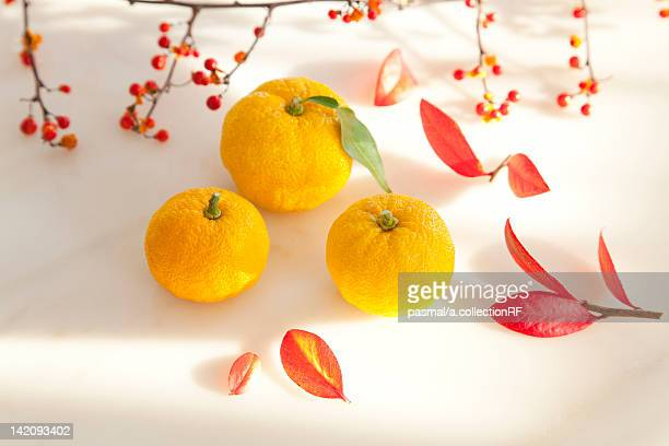 Yuzu Fruits and Autumnal Leaves