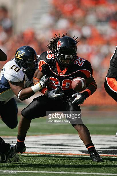 Yvenson Bernard of the Oregon State Beavers fumbles the ball against Desmond Bishop of the California Golden Bears on September 30 2006 at Reser...
