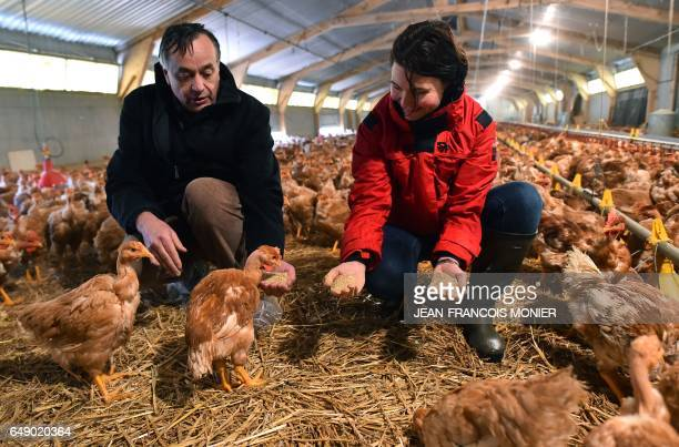 Yves de la Fouchardiere general manager of the 'Farmers' Cooperative of Loue' and French Chicken breeder Gaetane De Champs pose in a chicken coop on...