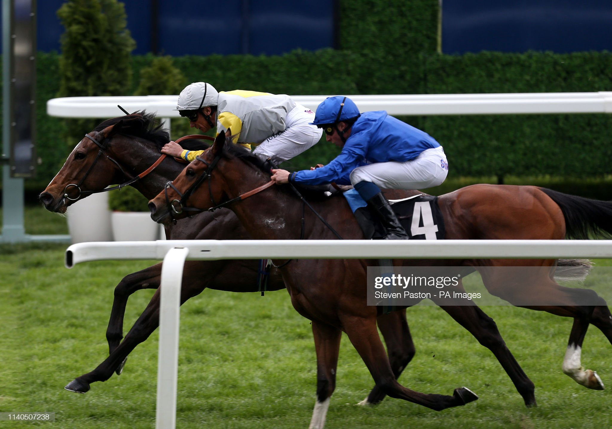 Royal Ascot Trials Day - Ascot Racecourse : Photo d'actualité