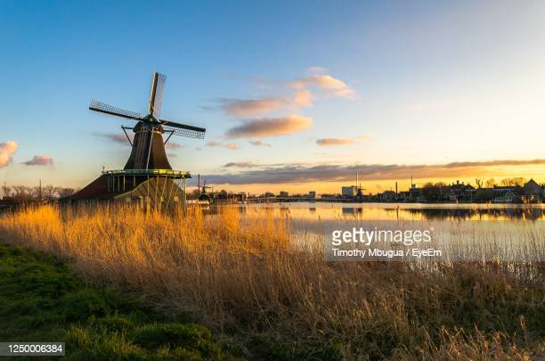 zaanse schans tradional dutch windmills at sunset, netherlands - netherlands stock pictures, royalty-free photos & images