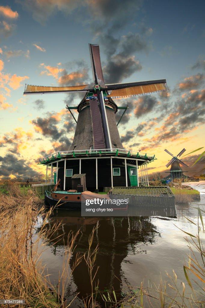 Zaanse Schans windmills at sunset : Stock Photo