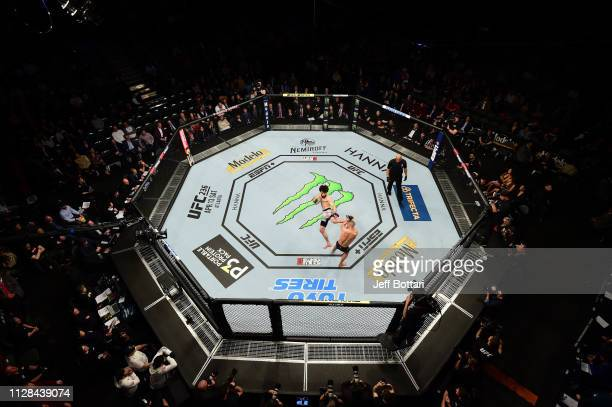 Zabit Magomedsharipov of Russia kicks Jeremy Stephens in their featherweight bout during the UFC 235 event at TMobile Arena on March 2 2019 in Las...