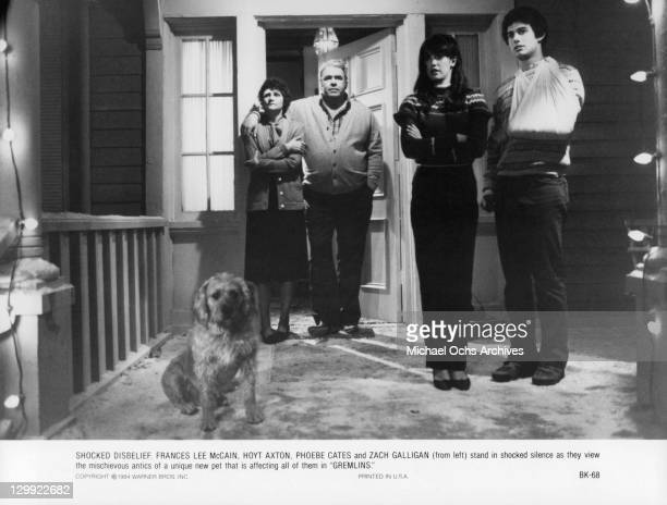 Zach Galligan Frances Lee McCain Hoyt Axton and Phoebe Cates all stare down the hallway at the dog in a scene from the film 'Gremlins' 1984