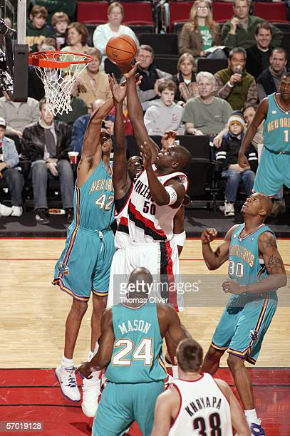Zach Randolph of the Portland Trail Blazers shoots a layup against PJ Brown and David West of the New Orleans/Oklahoma City Hornets on February 26...
