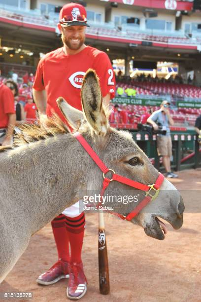Zack Cozart of the Cincinnati Reds smiles as Amos the donkey brays during batting practice before a game against the Washington Nationals at Great...