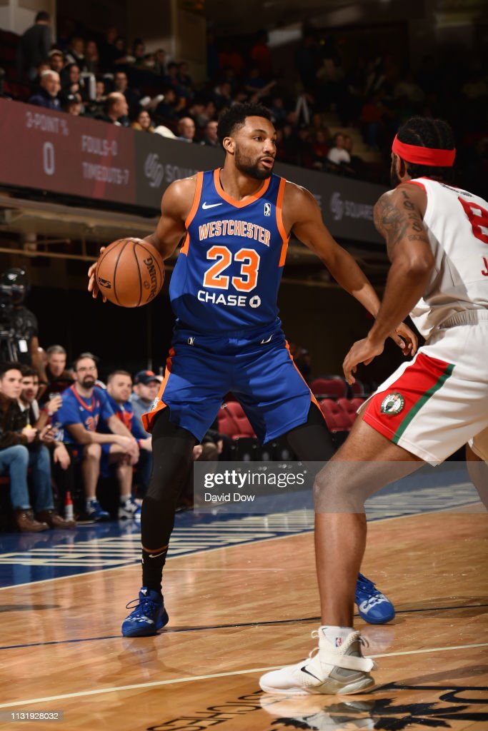 NY: Maine Red Claws v Westchester Knicks
