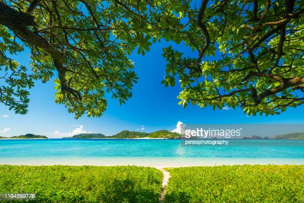 座間味島ケラマス - 島 ストックフォトと画像