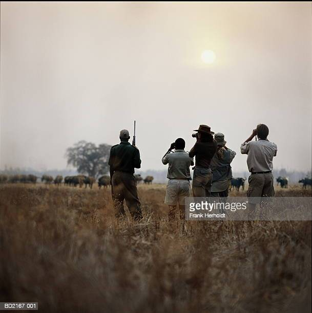 zambia, south luangwa national park, group of people on safari - south luangwa national park stock pictures, royalty-free photos & images