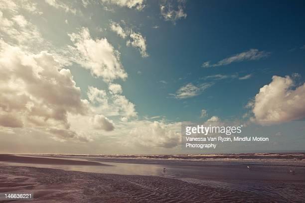 zandvoort beach - vanessa van ryzin foto e immagini stock