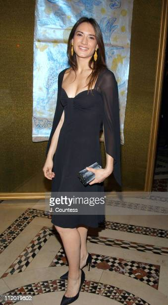 Zani Gugelmann during 9th Annual National Arts Awards Party at Cipriani in New York City New York United States