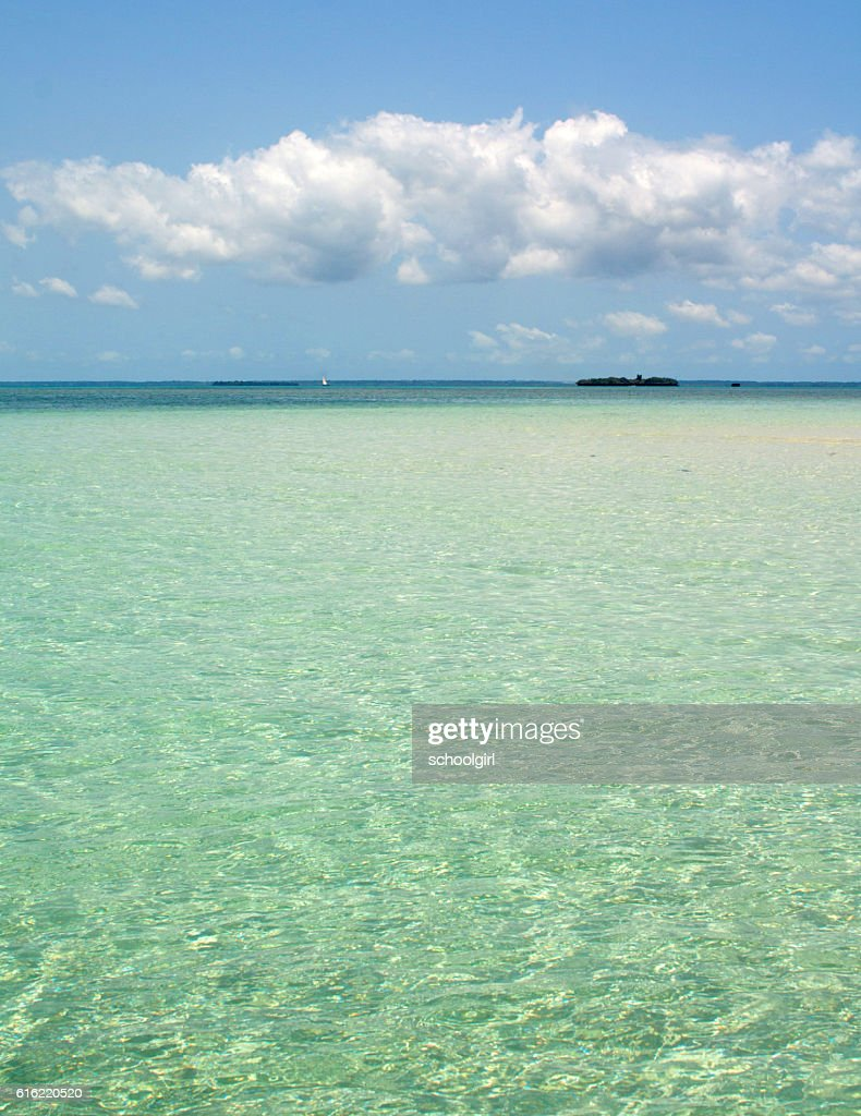 Zanzibar Beach : Stock Photo