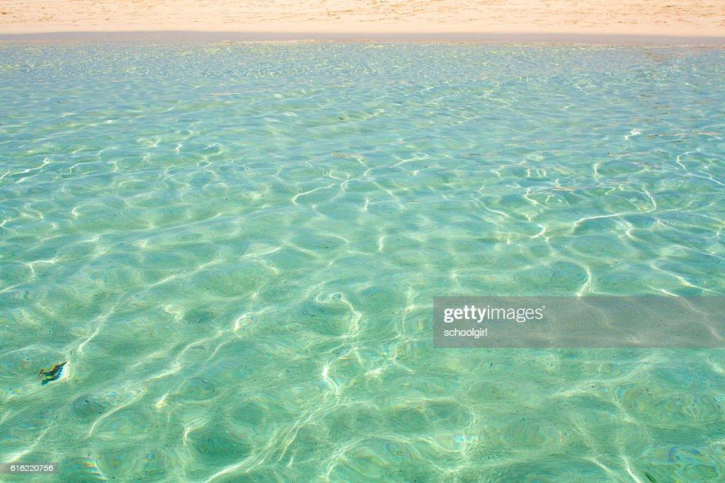 Zanzibar Beach : Stockfoto