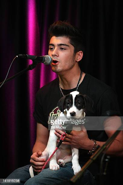 Zayn Malik from the band One Direction performs with a puppy from the Delco SPCA at Radio Station Q102 iHeartRadiod Performance Theater March 17,...