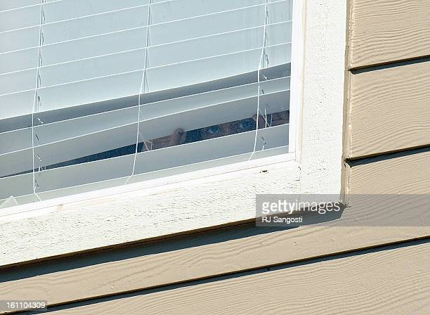 ZAZI19Eye peek out of the apartment window of Najibullah Zazi at the Vistas apartment complex in Aurora on Saturday Media reporters were camped out...