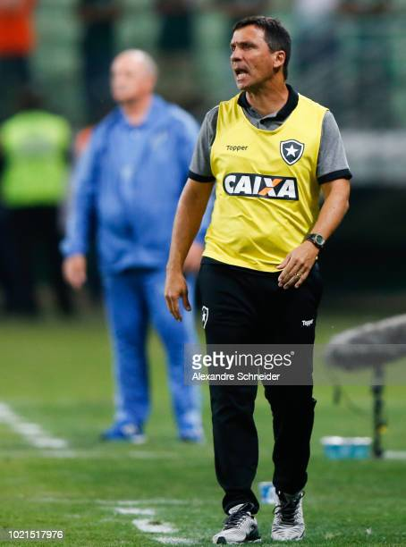 Ze Ricardo head coach of Botafogo shouts instructions to his players during the match against Palmeiras for the Brasileirao Series A 2018 at Allianz...
