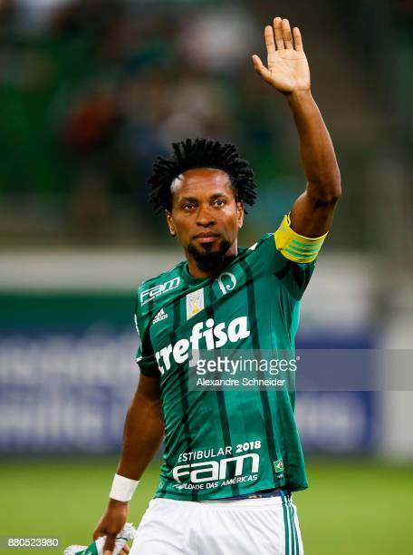 Ze Roberto of Palmeiras in action during the match against Botafogo for the  Brasileirao Series A 9ed06e8510a3c