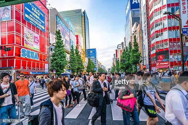 Zebra crossing in Akihabara shopping District, Tokyo, Japan