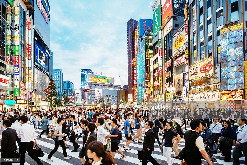 Passadeira no Parque Shinjuku, Tóquio ao pôr do sol : Foto de stock