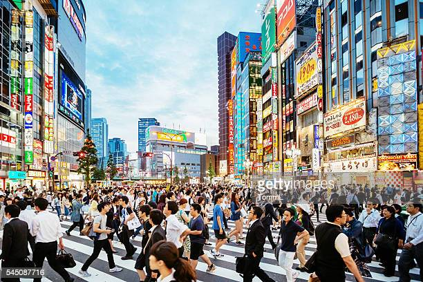 zebra crossing in shinjuku, tokyo at sunset - pedestrian crossing stock photos and pictures
