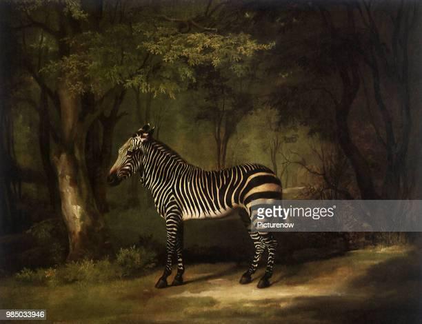 Zebra in Woods Stubbs George