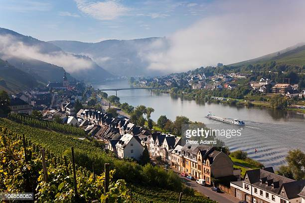 zell, mosel river valley, germany - moselle stock pictures, royalty-free photos & images