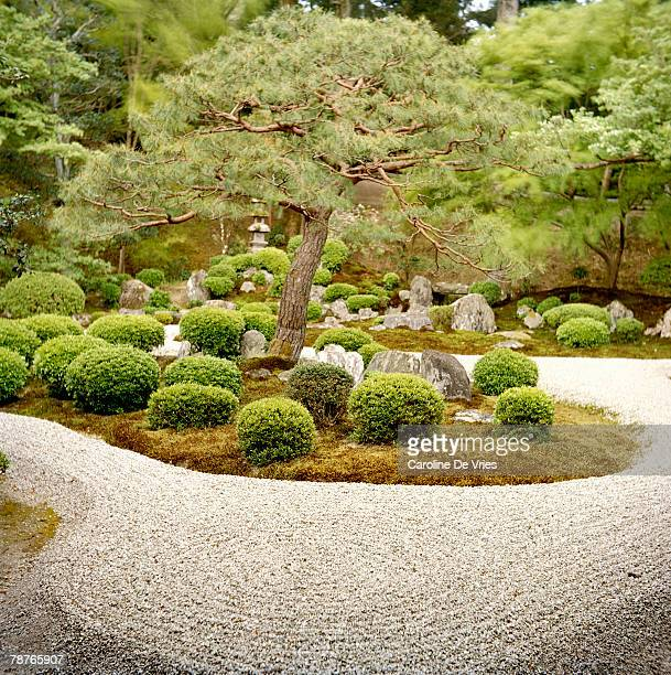 Japanese sand garden stock photos and pictures getty images for Japanese sand garden