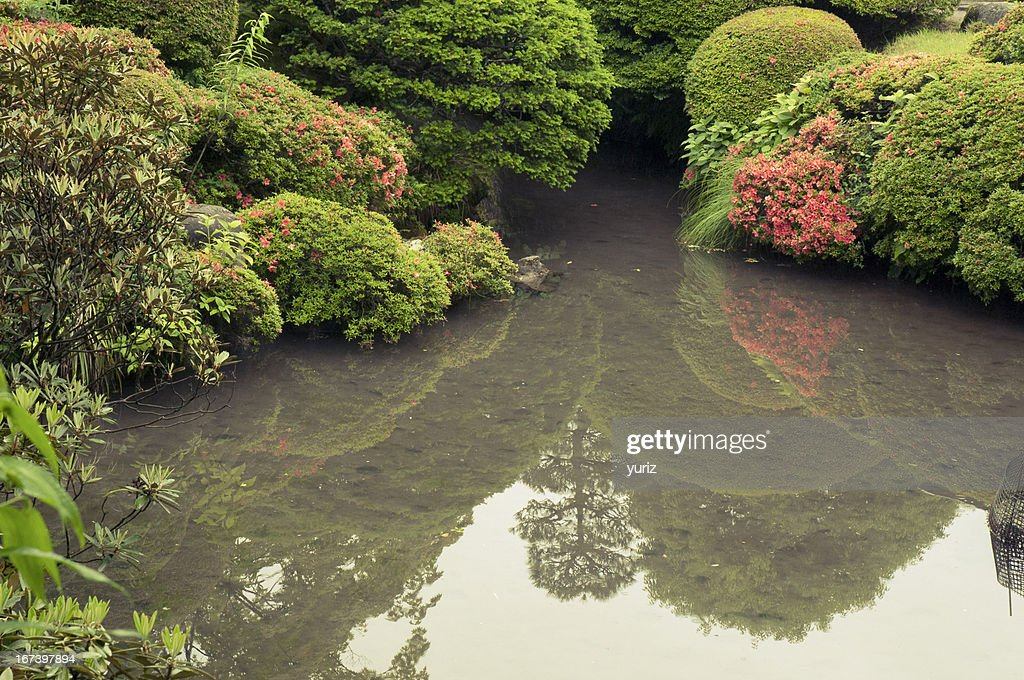 zen pond by summer : Stock Photo