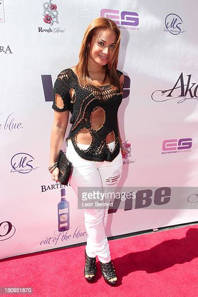 Zena Foster attended the Vibe Pre Award Show Mixer Hosted by BET The Game Hosea Chanchez at Stone Rose on June 25 2011 in Los Angeles California